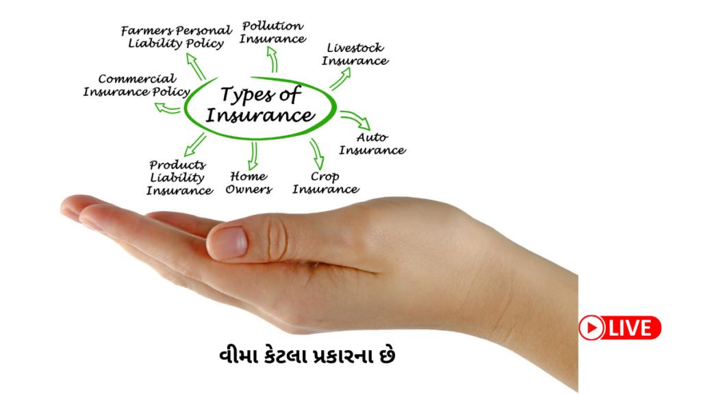 Insurance શું છે વીમા કેટલા પ્રકારના છે