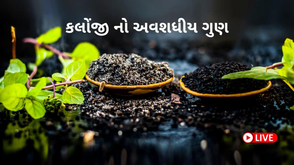 કલોંજી નો અવશધીય ગુણ Kalonji In Gujarati કલોંજી ના ફાયદા, ઉપયોગ અને નુકસાન