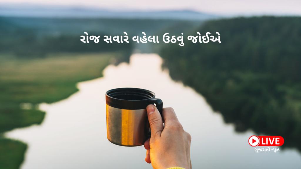 રોજ સવારે વહેલા ઉઠવું જોઈએ, સ્વસ્થ રહેવાના નિયમો, How To Be Healthy Health Care Tips In Gujarati