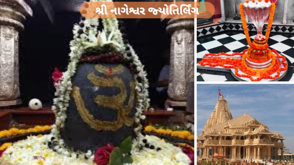 શ્રી નાગેશ્વર જ્યોતિર્લિંગ 12 Jyotirlinga List In Gujarati બાર જ્યોતિર્લિંગ નો મહિમા