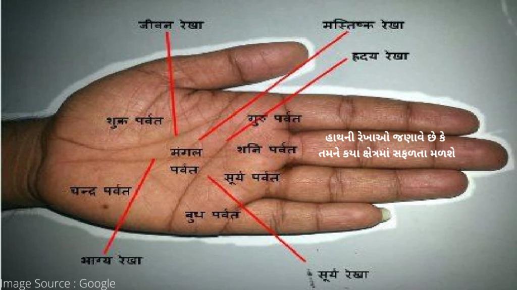 હસ્તરેખાશાસ્ત્ર: હાથની રેખાઓ જણાવે છે કે તમને કયા ક્ષેત્રમાં સફળતા મળશે, તપાસો તમારી હથેળી