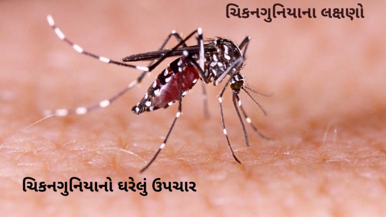 Chikungunya Kevi Rite Thay Che?ચિકનગુનિયાના લક્ષણો